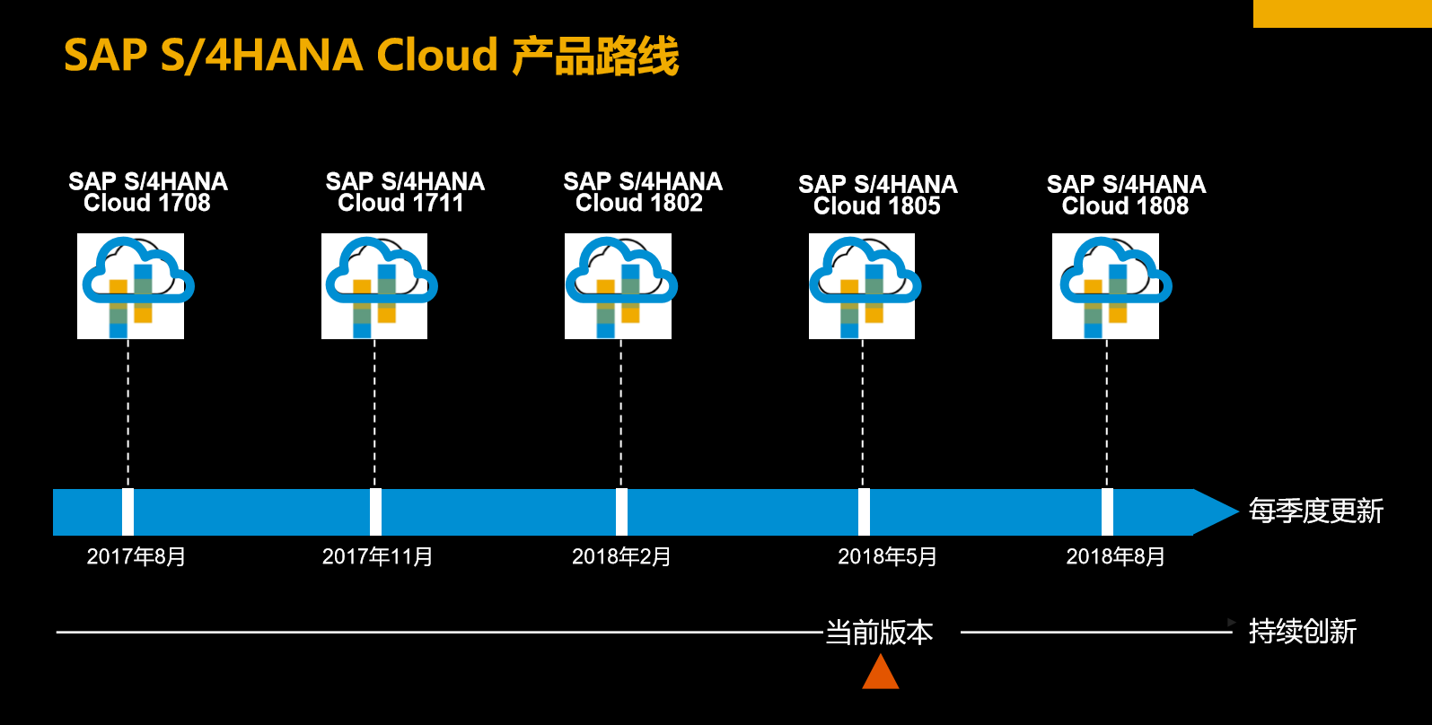 SAP S/4HANA Public Cloud